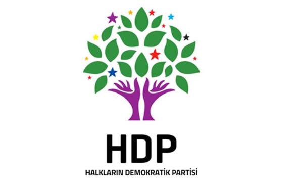 HDP Batman Milletvekili Saadet Becerikli ifade verdi