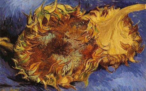 """Facebook'ta, Van Gogh'un """"Ayçiçekleri"""" serisine özel sergi açılacak"""