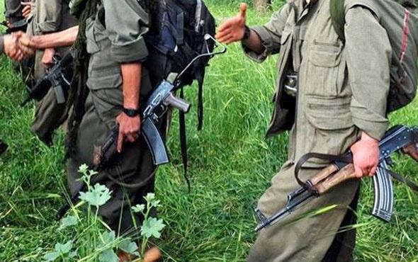 PKK'nın sözde grup sorumlusu öldürüldü