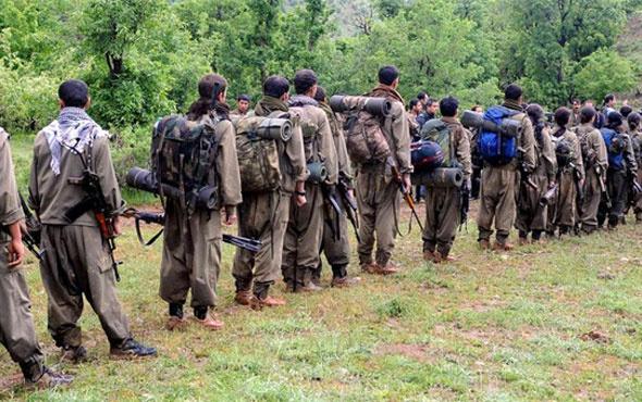 Kaçan PKK'lılar bakın hangi ülkeye gidiyor? Azeri ajans yazdı
