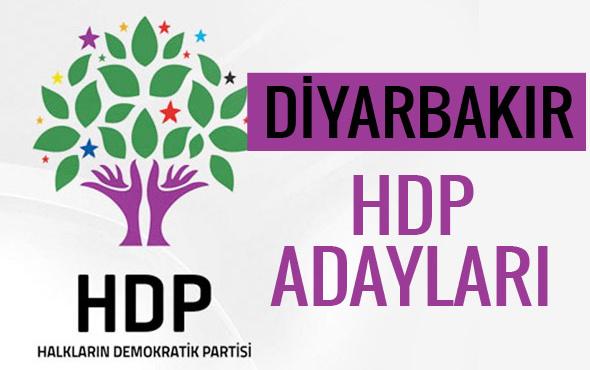 HDP Diyarbakır milletvekili adayları 27. dönem listesi