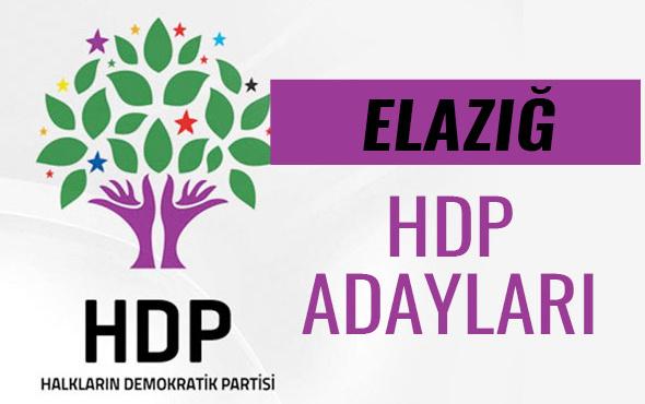 HDP Elazığ milletvekili adayları 27. dönem listesi