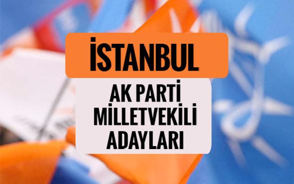 AKP Bolu milletvekili adayları 2018 AK Parti listesi