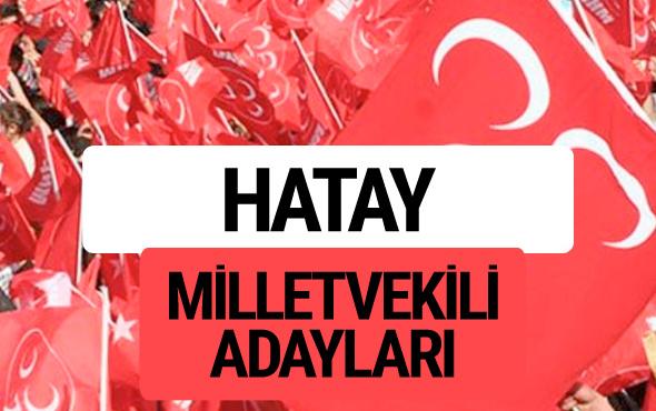MHP Hatay milletvekili adayları 2018 YSK kesin listesi