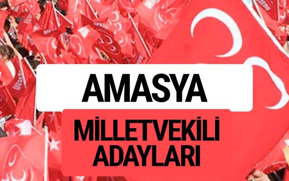 MHP Amasya milletvekili adayları 2018 YSK kesin listesi