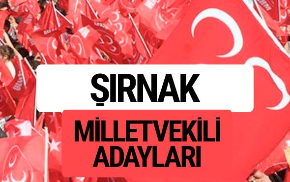 MHP Şırnak milletvekili adayları 2018 YSK kesin listesi