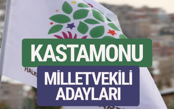 HDP Kastamonu milletvekili adayları 2018 YSK isim listesi