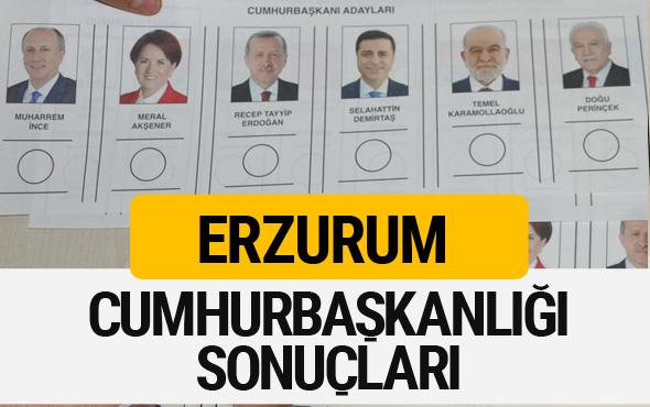 Erzurum Cumhurbaşkanlığı seçim sonucu 2018 Erzurum sonuçları