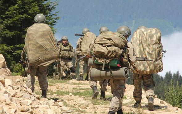Bitlis'te tespit edildiler hepsi etkisiz hale getirildi