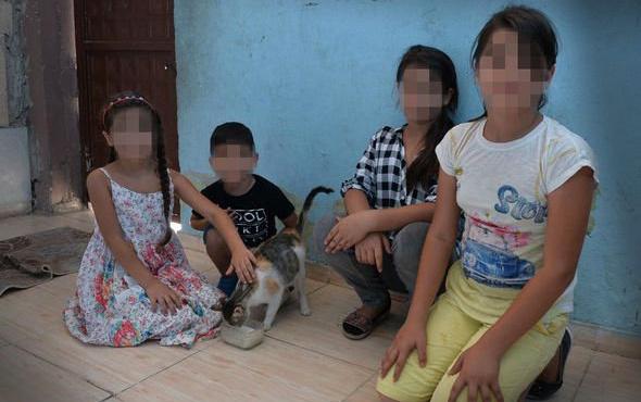 Gelini ve torunlarını evden çıkarmak için kedi parçaladı!
