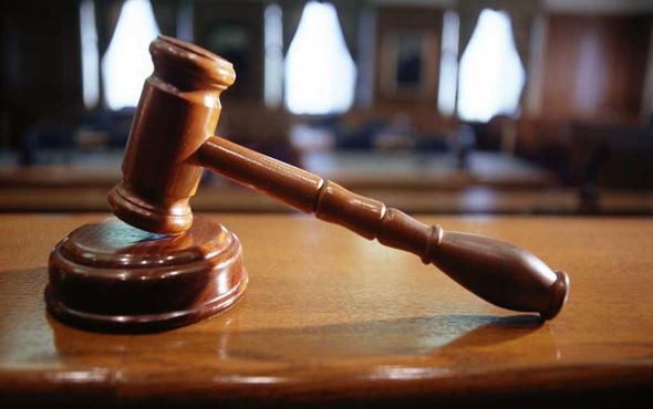 Mahkeme: İnsanlar ve hayvanlar aynı haklara sahiptir