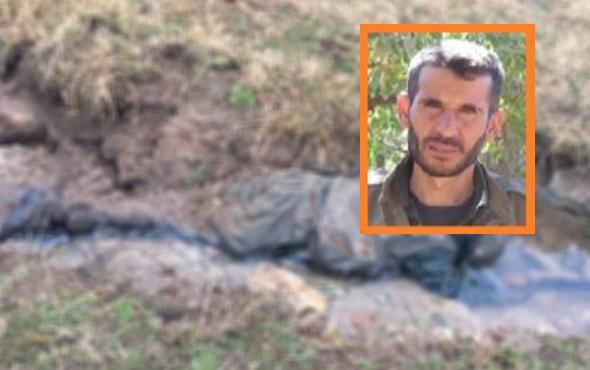PKK'ya Şırnak'da ağır darbe: O isim öldürüldü