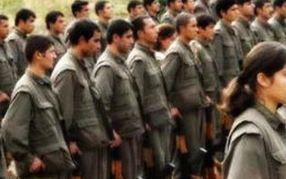 Teslim olan PKK'lıdan şok açıklamalar!