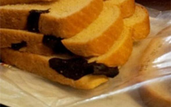 Ekmekten yılan çıktı!