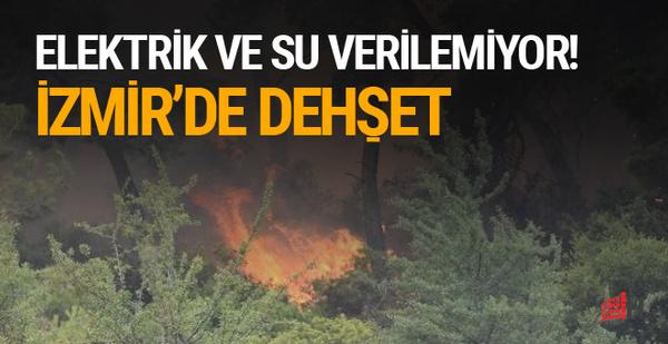 Alanya'dan sonra İzmir'de 50 hektarlık alan yanıyor