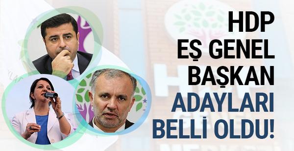 HDP'de eş genel başkan adayları belli oldu!