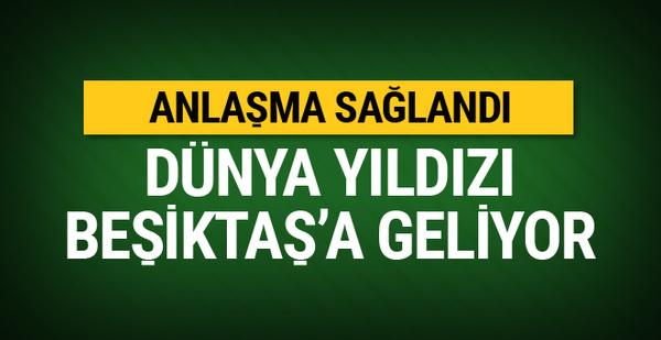 Fellaini Beşiktaş'la anlaştı!