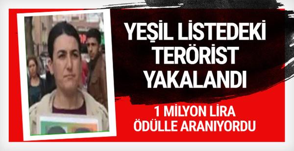 Yeşil listedeki terörist yakalandı!