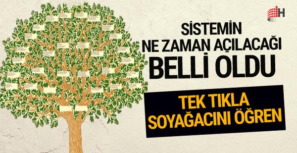Soy ağacı sorgulama sistemi ne zaman açılacak yeni açıklama