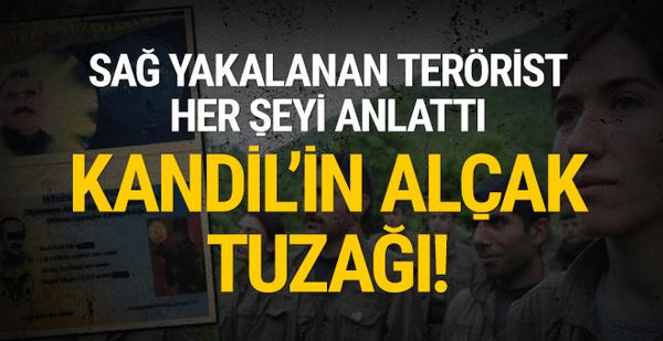 Sağ yakalanan terörist her şeyi itiraf etti: Kandil'in alçak tuzağı!