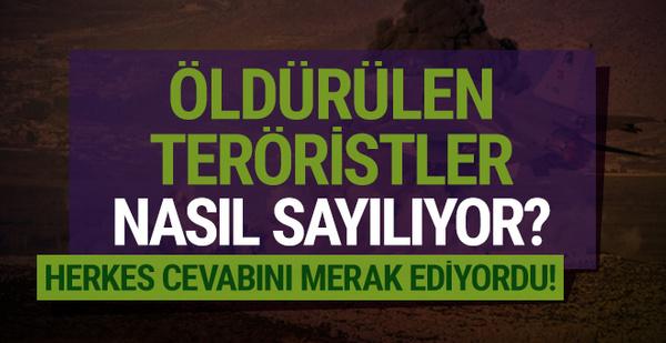 Herkes cevabını merak ediyordu! Öldürülen teröristler nasıl sayılıyor?