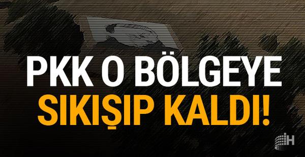 PKK o bölgeye sıkışıp kaldı! Mehmetçik üstüne gidiyor...