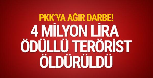 İçişleri Bakanlığı duyurdu! 4 milyon TL ödülle aranan terörist öldürüldü