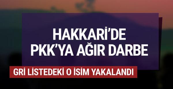 PKK'ya bir darbe daha! O isim yakalandı