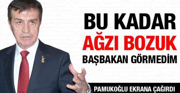 Pamukoğlu yine Erdoğan'ı bombaladı