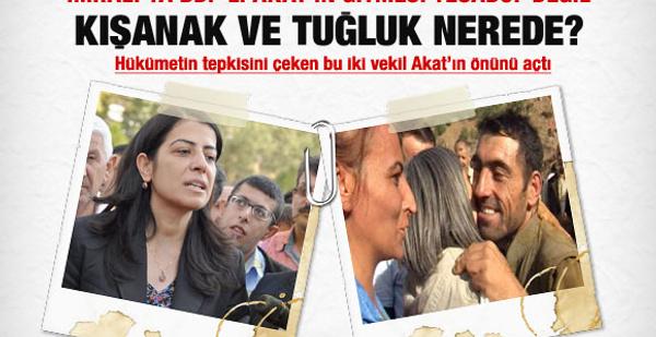 İmralı'ya neden BDP'den Ayla Akat gitti?