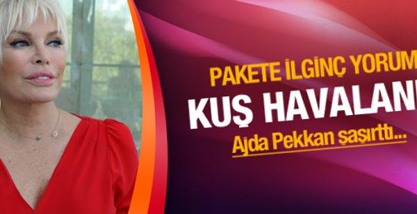 Ajda Pekkan'dan demokratikleşme paketine ilginç yorum
