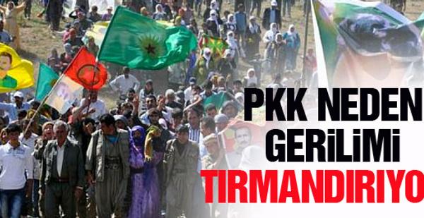 PKK neden gerilimi tırmandırıyor? İşte yanıtı
