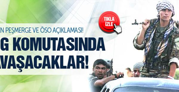 Peşmerge ve ÖSO YPG komutasında savaşacak!