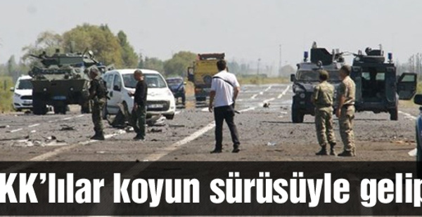 Iğdır saldırısı PKK koyun sürüsüyle gelip...
