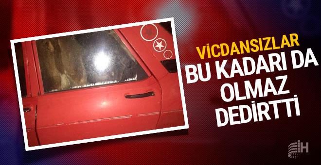 Ankara'da jandarmayı bile şaşırtan hırsızlık
