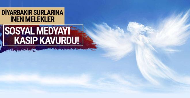 Diyarbakır surlarına inen melekler sosyal medyayı salladı ama...