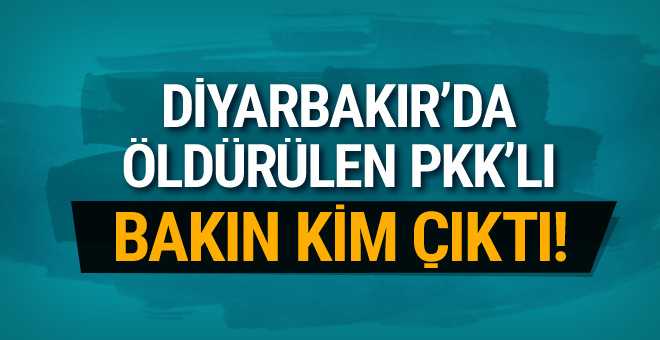 Diyarbakır'ın iki ilçesinde çatışma çıktı! O PKK'lı öldürüldü