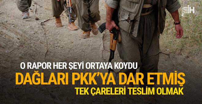 Dikkat çekici rapor dağları PKK'ya dar etti teslim oluyorlar