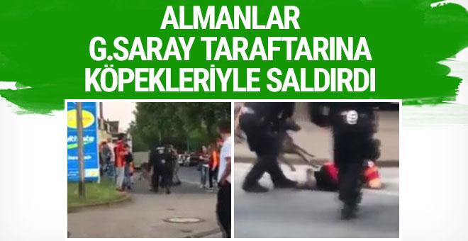 Alman polisinden G.Saray taraftarına köpekli saldırı