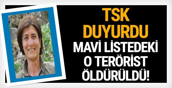 TSK duyurdu: Mavi listedeki o terörist öldürüldü!