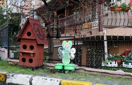 Sokak hayvanlarına rengarenk yuvalar