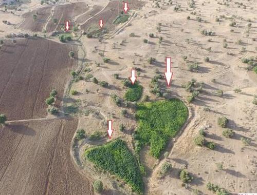 Lice operasyonu PKK 10 ayrı kamu arazisine kurmuş