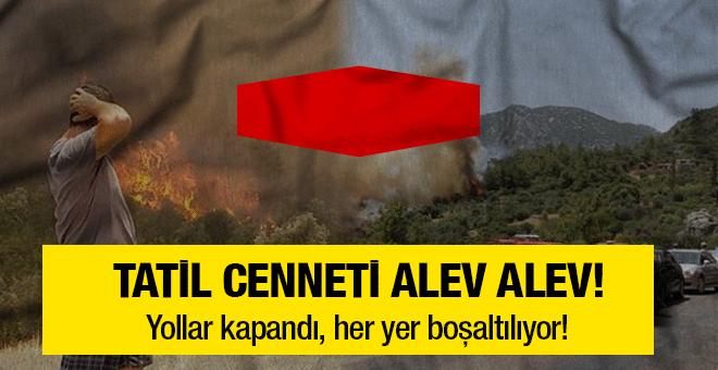 Tatil cenneti Antalya alev alev yanıyor! Bir bir boşaltılıyor
