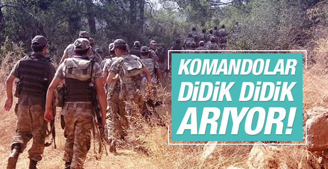 Komandolar 11 darbeci askerin peşinde!