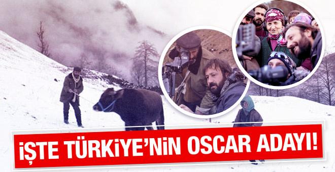 Türkiye'nin Oscar adayı hangi film oldu?