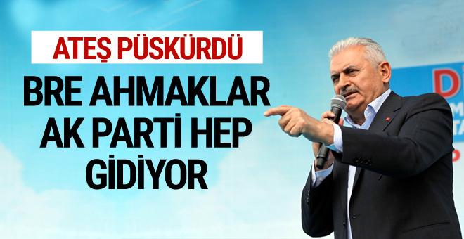 Başbakan Yıldırım: Bre ahmaklar AK Parti Anıtkabir'e hep gidiyor
