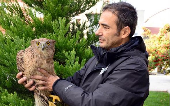 Burdur'da ilk kez görüldü tür sayısı 280'e çıktı