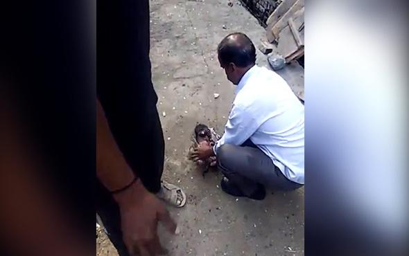 Vicdan yakan görüntü yeni doğmuş bebek kanalizasyondan çıktı