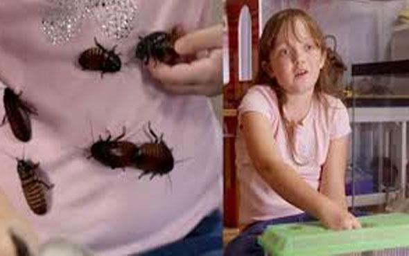 Evinde 7000'den fazla hamamböceği besliyor!