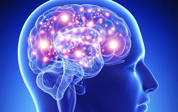 İnsan Beyni Geliştirme Projesi Start Aldı